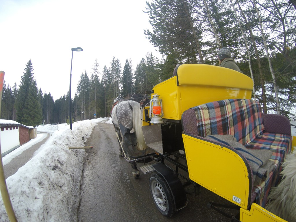 Sleigh ride in Seefeld