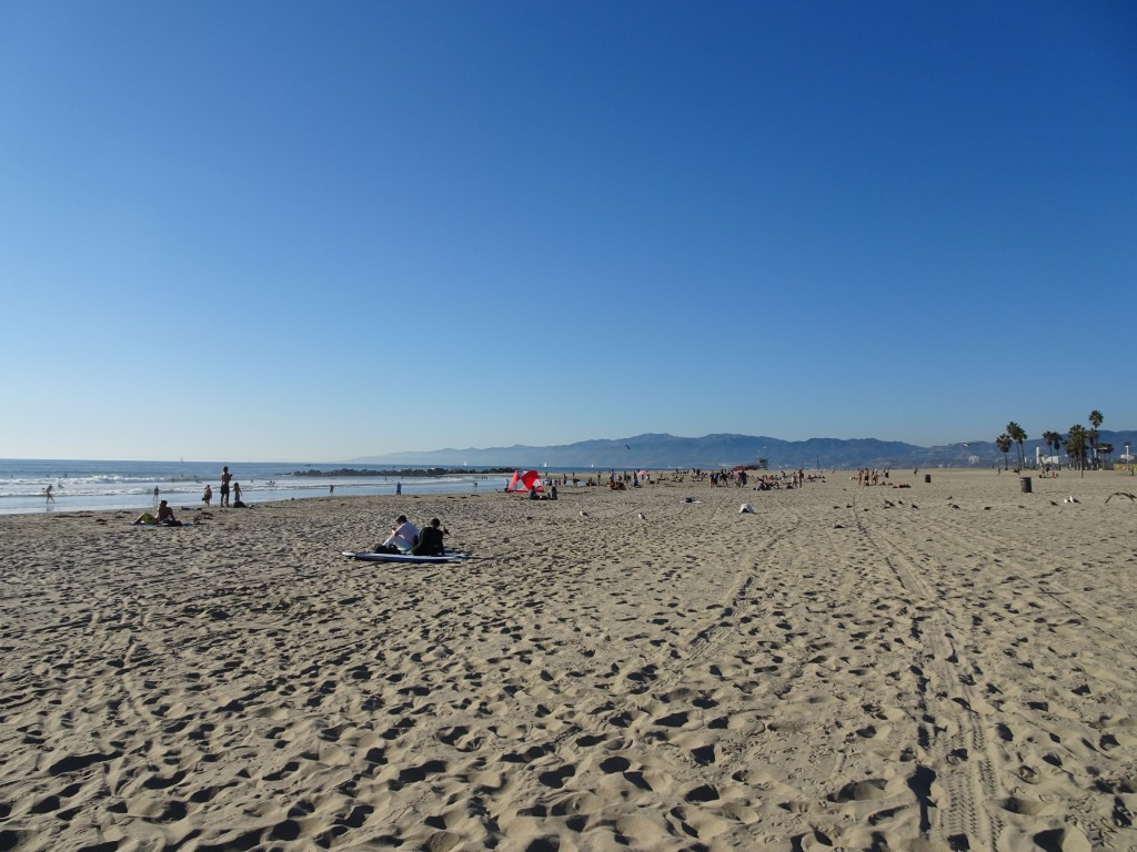 Venice Beach in Los Angeles was absolutely beautiful