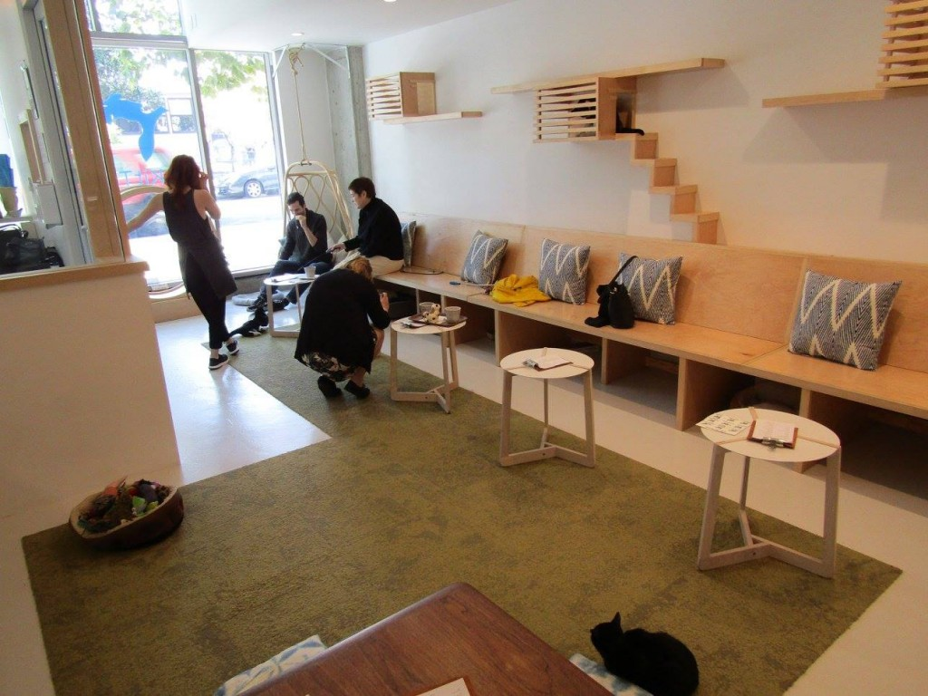 The Cosy Traveller's review of KitTea, the cat cafe in San Francisco