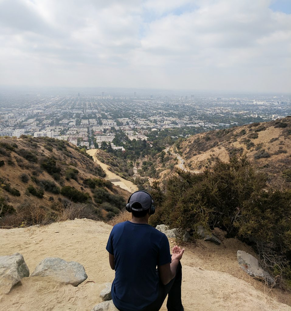 Hike Runyon Canyon with rescue dogs!
