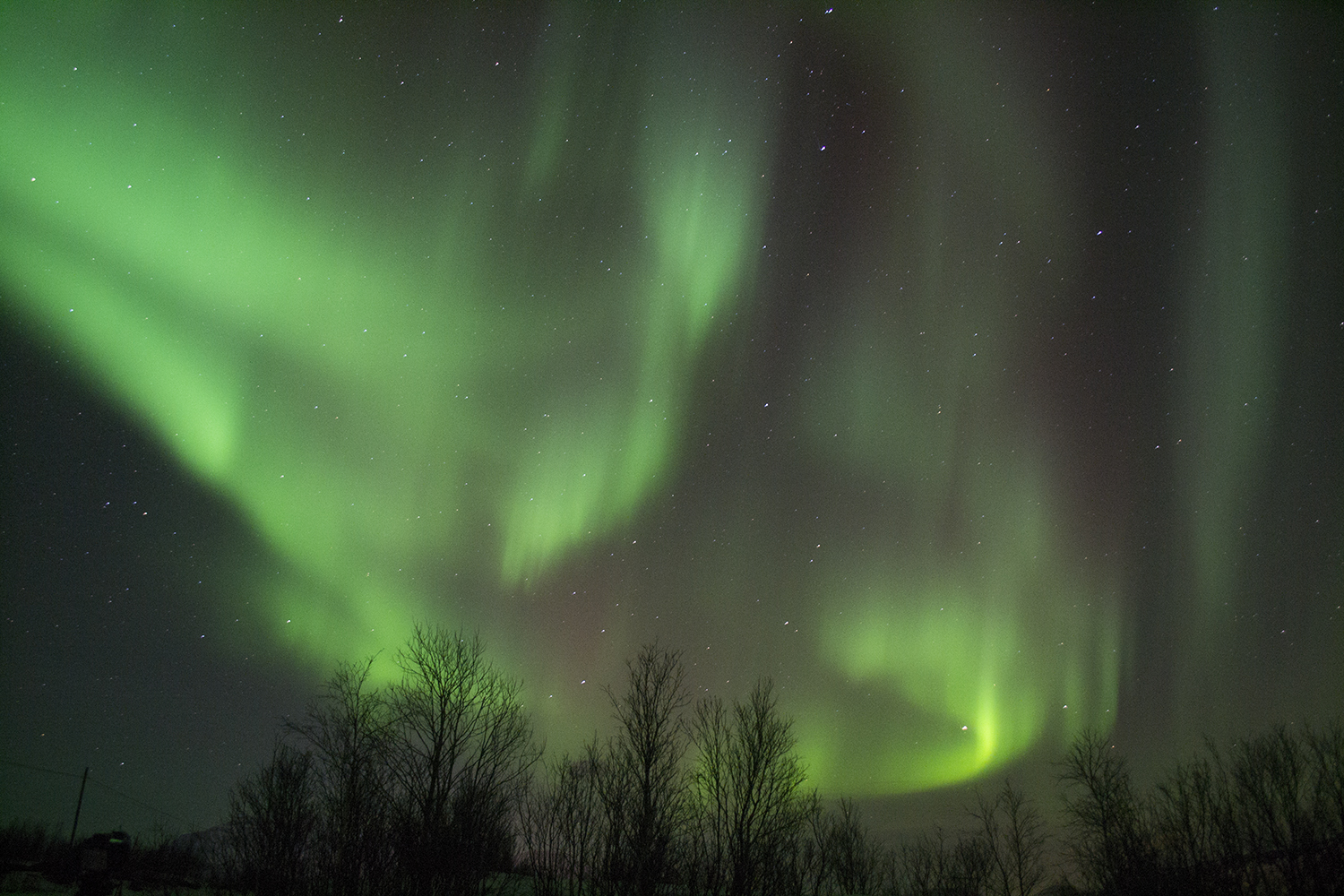 chasing the northern lights in Tromso